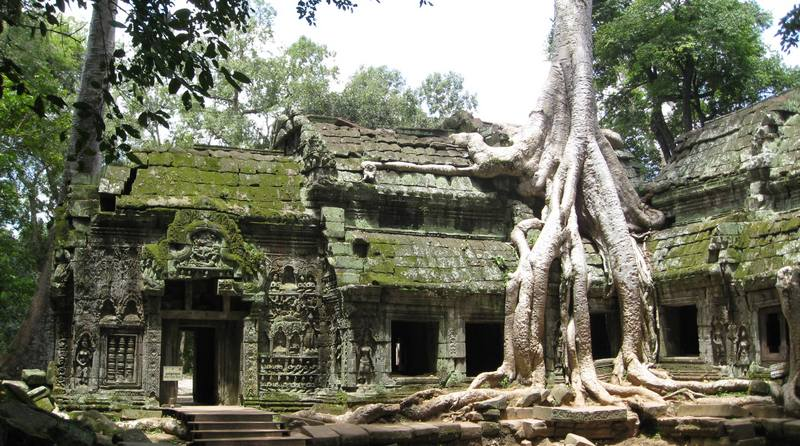 Ta-Prohm-sunlight.jpg