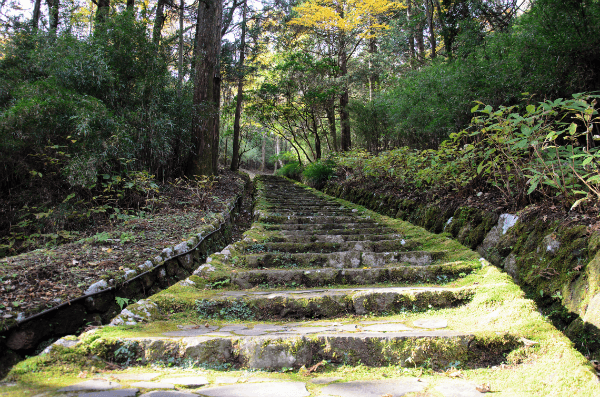 Stone-staircase-in-Hakone-Japan-600.png